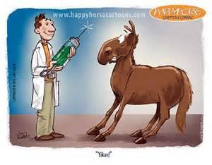 horse vaccine