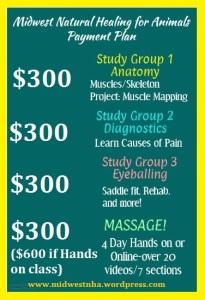 poster payment plan